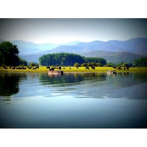 Εκδρομή Λίμνη Κερκίνης - Σέρρες - Θεσσαλονίκη