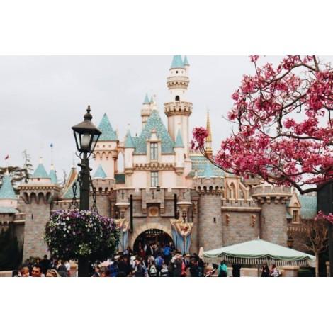 Εκδρομές Χανιά Disneyland