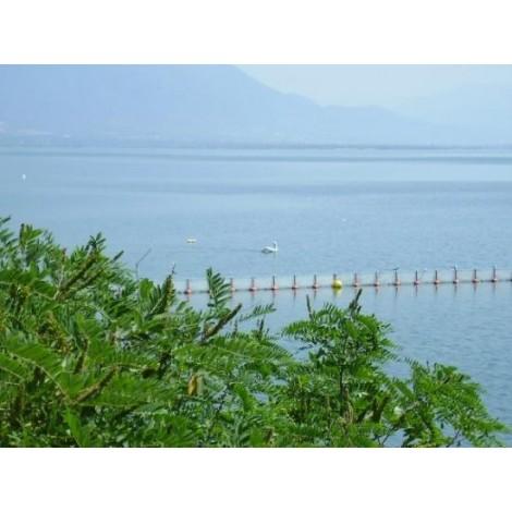 Εκδρομή Σέρρες - Λίμνη Κερκίνης - Σαντάνσκι