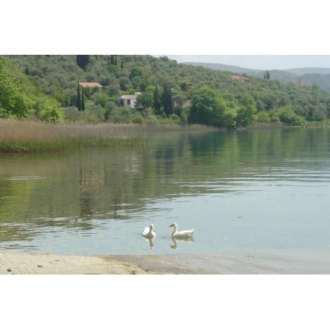 Εκδρομή στη λίμνη Τριχωνίδας, Καρπενήσι