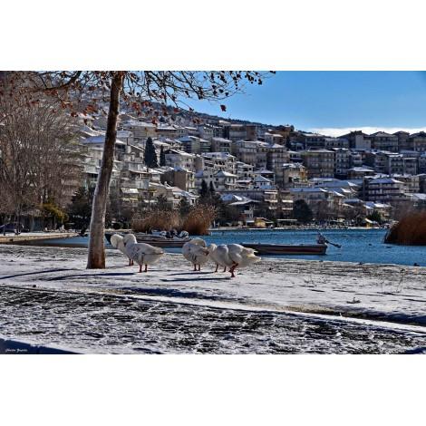 Χριστούγεννα Καστοριά - Πρέσπες - Μετέωρα